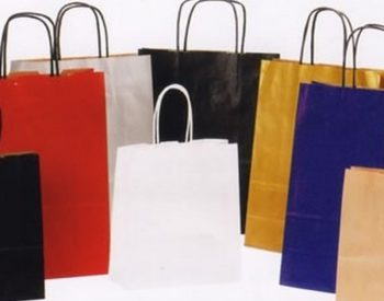 Paper Bags with Twist Handle